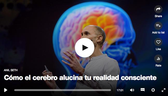 Cómo el cerebro alucina tu realidad consciente