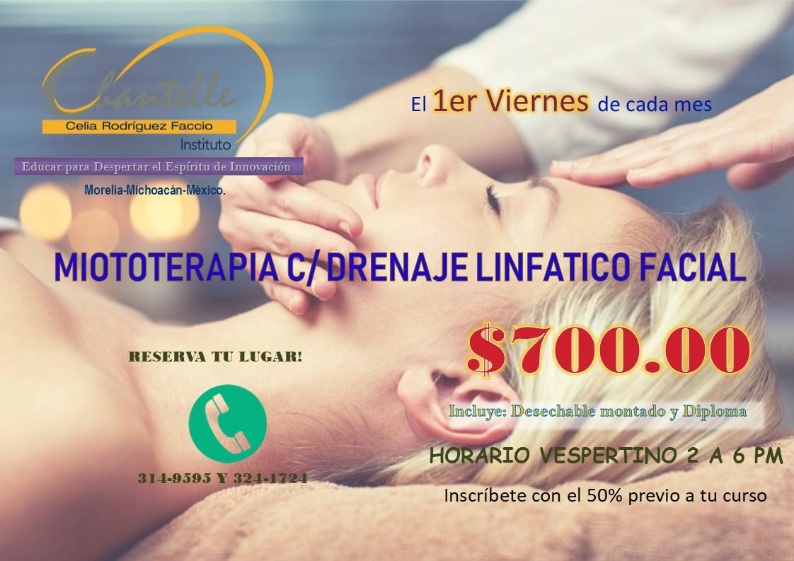 http://www.macroestetica.com/public/uploads/empresas/ChantalleInstitute/MIOTOTERAPIA%5b7895%5d.jpg