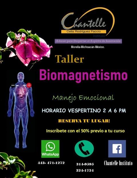 http://www.macroestetica.com/public/uploads/empresas/ChantalleInstitute/biomagnetismo.jpg