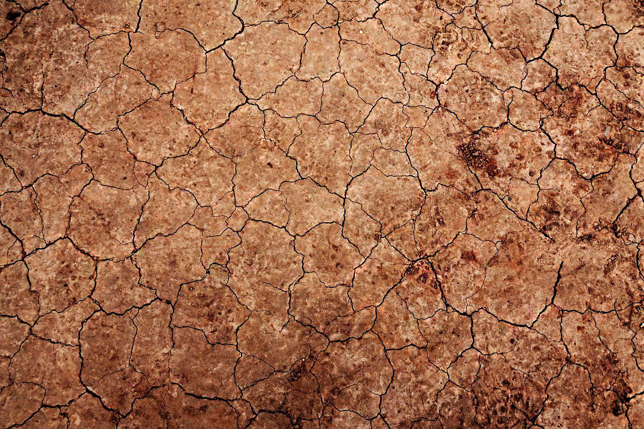 ¿piel-deshidratada-como-recuperar-su-brillo-y-evitar-arrugas