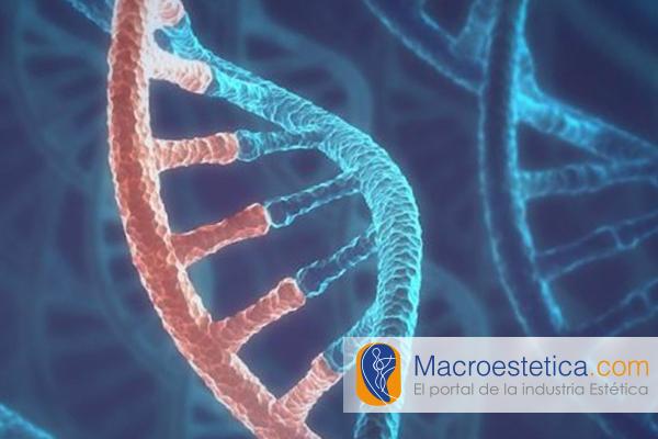Moléculas sueltas de ARN rejuvenecen la piel