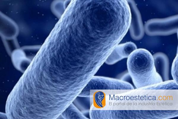 Colagenasa Bacteriana ¿Terapia anticelulítica del futuro?