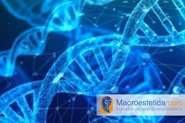 Perdida del control de ADN Estudios muestran que ocurre a los 55 años