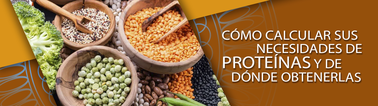 Cómo calcular sus necesidades de proteínas y de dónde obtenerlas