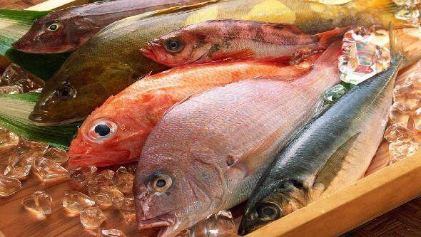 Consumo de pescado contaminado sin que lo percibamos reduce uno de los mayores sistemas de defensa del organismo