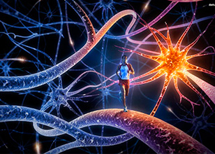 Células cutáneas humanas transformadas directamente en neuronas motoras.