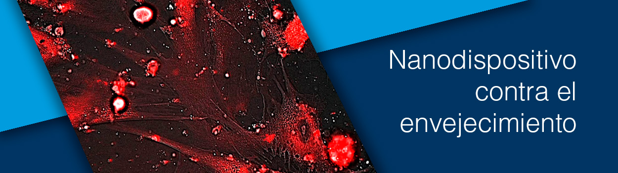Nanodispositivo contra el envejecimiento